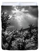 Cholla Cactus Garden Bathed In Sunlight In Black And White Duvet Cover