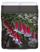 Christmas Bells 1 - Australian Native Fuchsia Duvet Cover