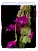 Christmas Cactus Purple Flower Blooms Duvet Cover