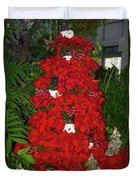 Christmas Poinsettia Display 002 Duvet Cover