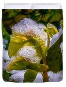Christmas Rose April 25 Duvet Cover