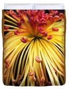 Chrysanthemum Morning Duvet Cover