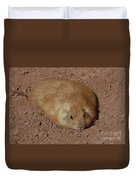 Chubby Prairie Dog Resting In A Shallow Hole Duvet Cover