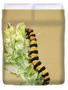 Cinnabar Moth Caterpillar Duvet Cover