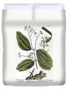 Cinnamon Tree, 1735 Duvet Cover