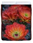 Claret Cup Cactus Flowers  Duvet Cover