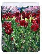 Claret Tulips  Duvet Cover