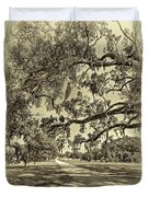 Classic Southern Beauty - Evergreen Plantation -sepia Duvet Cover