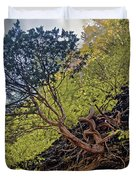Climbing Tree Roots Duvet Cover