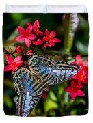 Clipper Butterfly 1 Duvet Cover