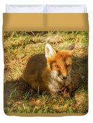 Close-up Of A Fox Resting In A Park Duvet Cover