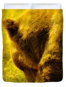 Close Up Of A Grizzily Duvet Cover