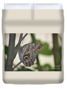 Close Up Of A Pretty Brown Morpho Butterfly  Duvet Cover