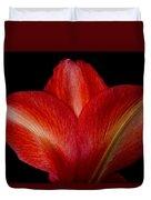 Close-up Of Colorful Amaryllis Flower Petals Duvet Cover