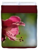 Red Horsechestnut Flower Duvet Cover