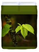 Close Up Of Leaves In Forest Duvet Cover