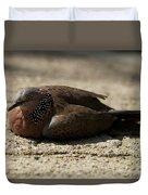 Close-up Of Mottled Pigeon On Sandy Ground Duvet Cover