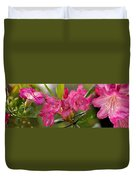 Close-up Of Pink Horatio Flowers Duvet Cover