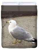 Close-up Of Seagull Duvet Cover