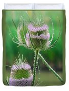 Close Up Of Teasel Blossoms Revealing Duvet Cover