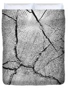 Close Up Of Tree Trunk Duvet Cover