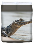 Close-up Of Yacare Caiman On Sandy Beach Duvet Cover