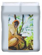 Close-up Portrait Of A Nicaraguan Spider Monkey Sitting And Looking At The Camera Duvet Cover