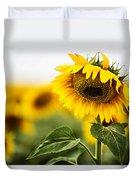 Close Up Single Sunflower In South Dakota Duvet Cover