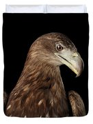 Close-up White-tailed Eagle, Birds Of Prey Isolated On Black Bac Duvet Cover