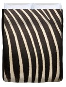 Closeup Of A Grevys Zebras Coat Equus Duvet Cover