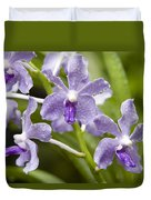 Closeup Of A Hybrid Cultivated Orchid Duvet Cover