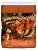 Closeup Of An Ocellated Lionfish Duvet Cover