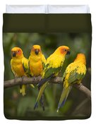 Closeup Of Four Captive Sun Parakeets Duvet Cover