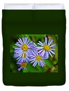 Closeup Of Leafy Bract Asters On Iron Creek Trail In Sawtooth National Wilderness Area-idaho  Duvet Cover
