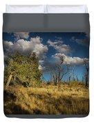 Clouds Over Mesa Verde Duvet Cover
