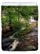 Cloughleagh Wood, Kilbride, Ireland Duvet Cover