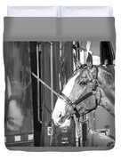 Clydesdale Shine Duvet Cover