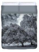 Coast Live Oak Monochrome Duvet Cover