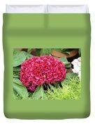 Cockscomb Flower Duvet Cover