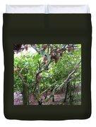 Cocoa Tree With Ripe Cocoa Pods Duvet Cover