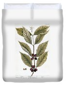 Coffee Plant, 1735 Duvet Cover