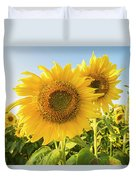 Colby Farms Sunflower Field Closeup Duvet Cover