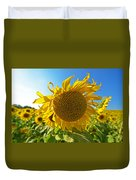 Colby Farms Sunflower Field Newbury Ma Ball Of Fire Duvet Cover