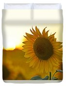 Colby Farms Sunflower Field Newbury Ma Closeup Sunset Duvet Cover