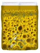 Colby Farms Sunflower Field Newbury Ma Duvet Cover