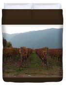 Colchagua Valley Vinyard II Duvet Cover