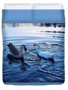 Cold Morning Swim 2 Duvet Cover