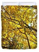 Colorado Aspens In Fall Duvet Cover