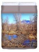 Colorado Beaver Ecosystem Duvet Cover