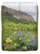 Colorado Color #4 Duvet Cover
